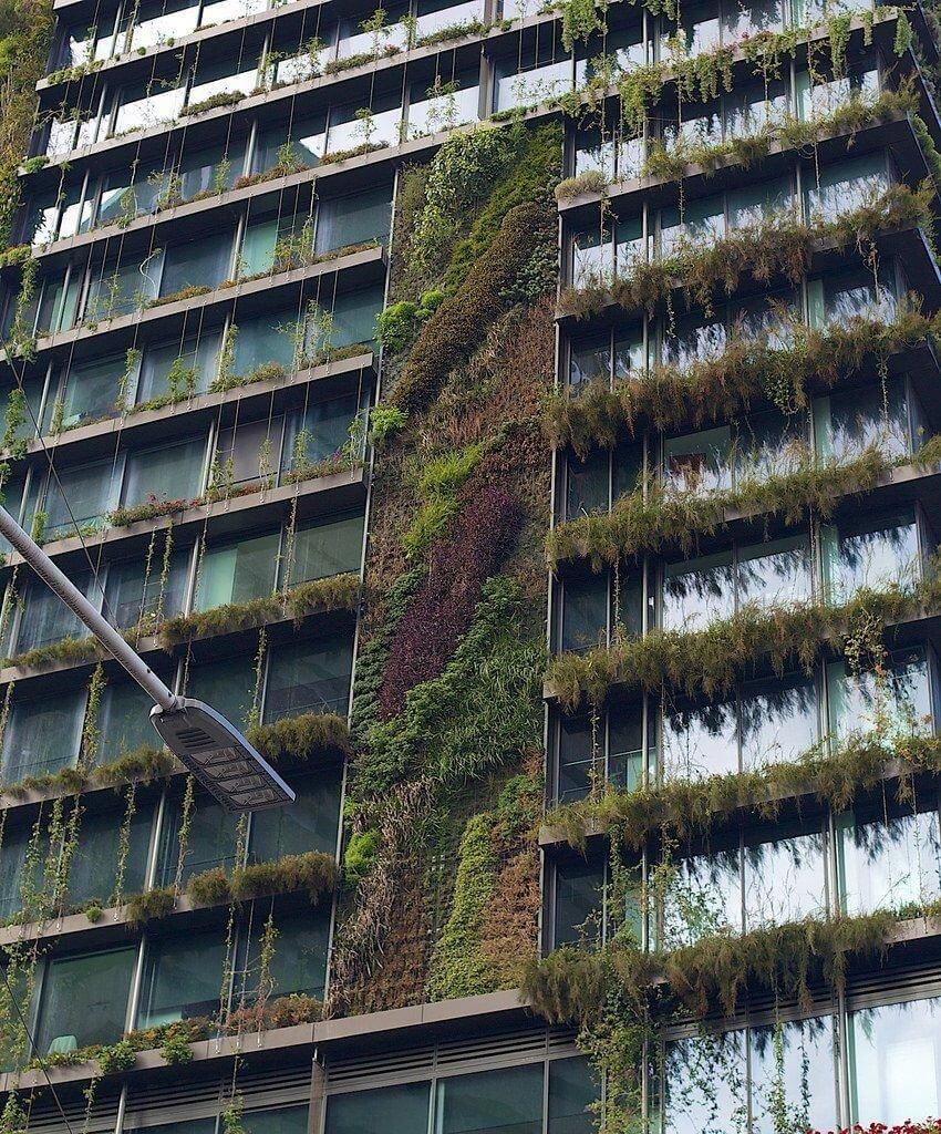 verde verticale (8)