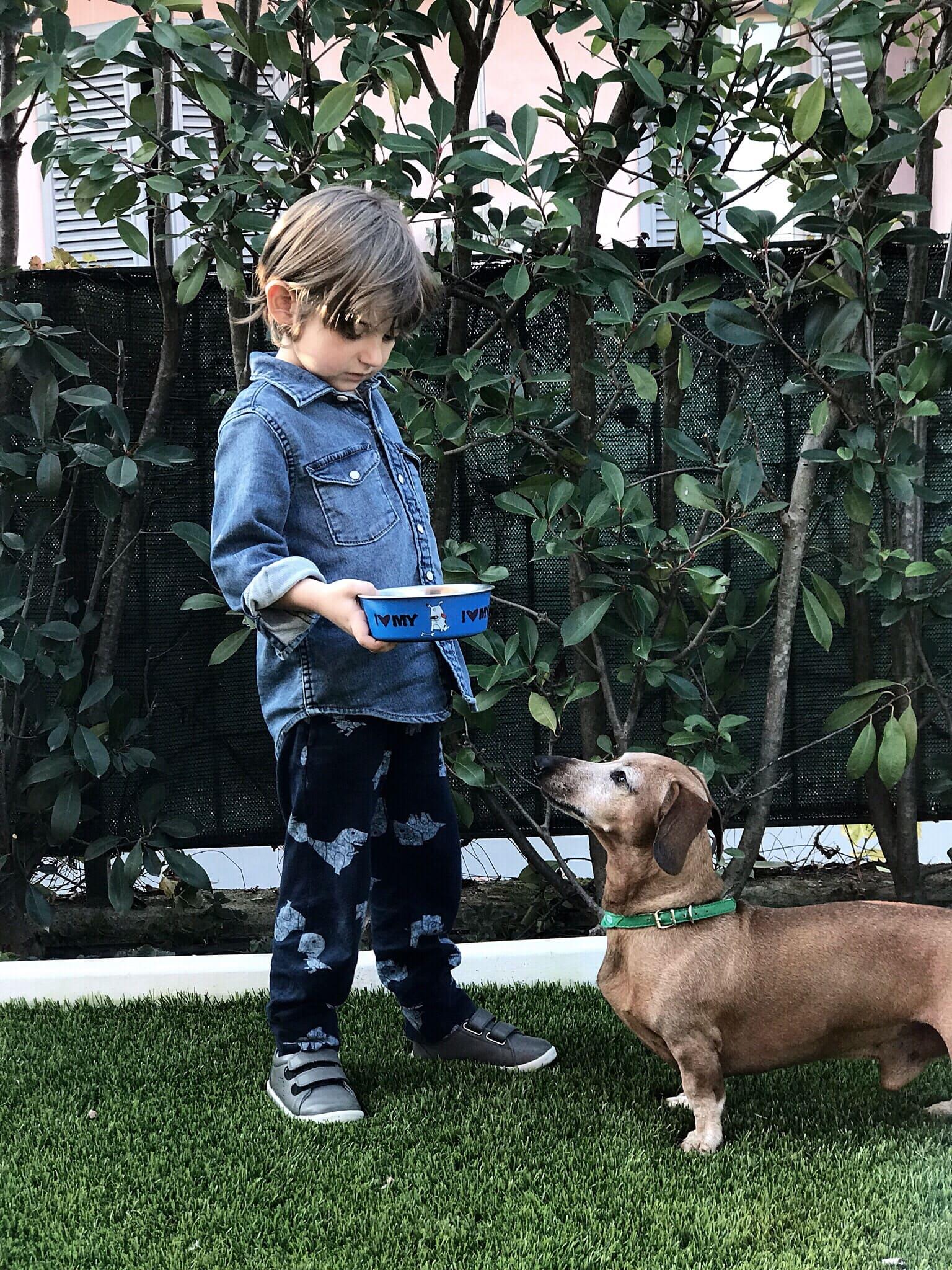Montessori e bambini cura degli animali