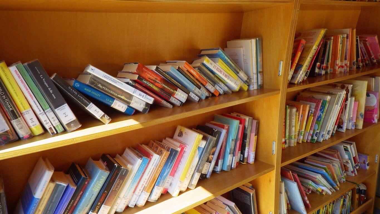 Tutto quello che avreste voluto sapere sui bibliobus for Nuovi prestiti immobiliari