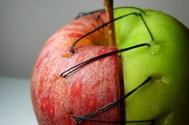 rapporti di coppia mela intera