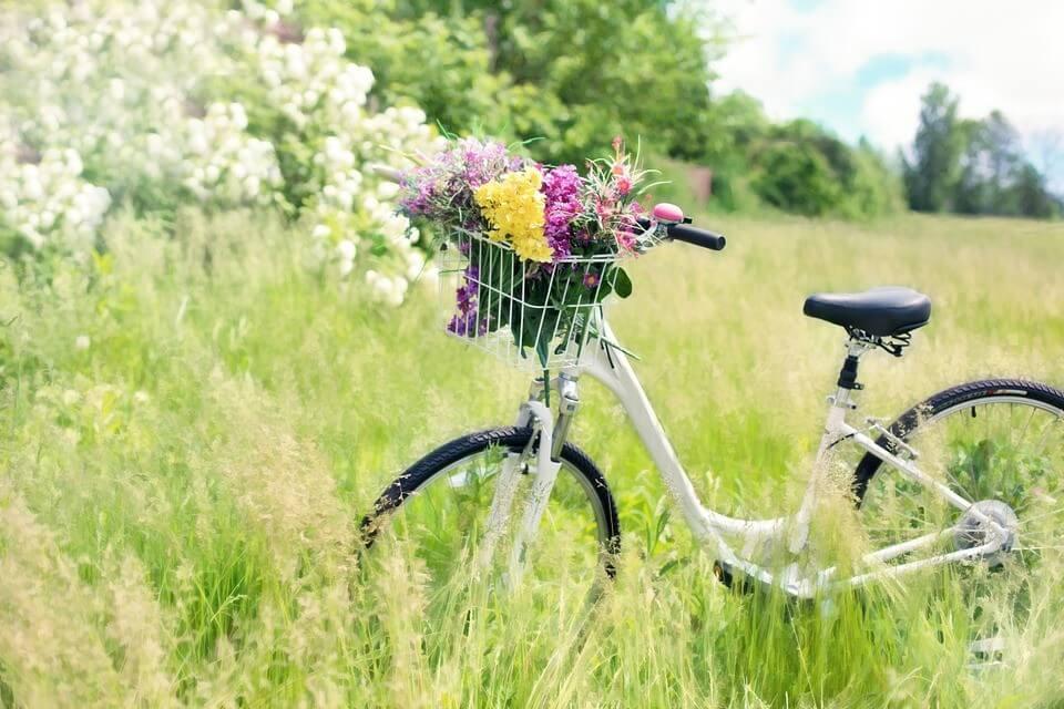 giornata mobilità sostenibile bike the nobel