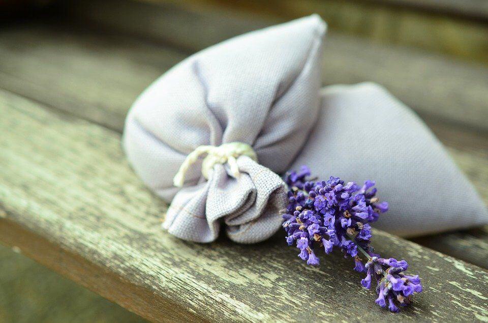 deodoranti naturali fai da te per la casa per ambienti
