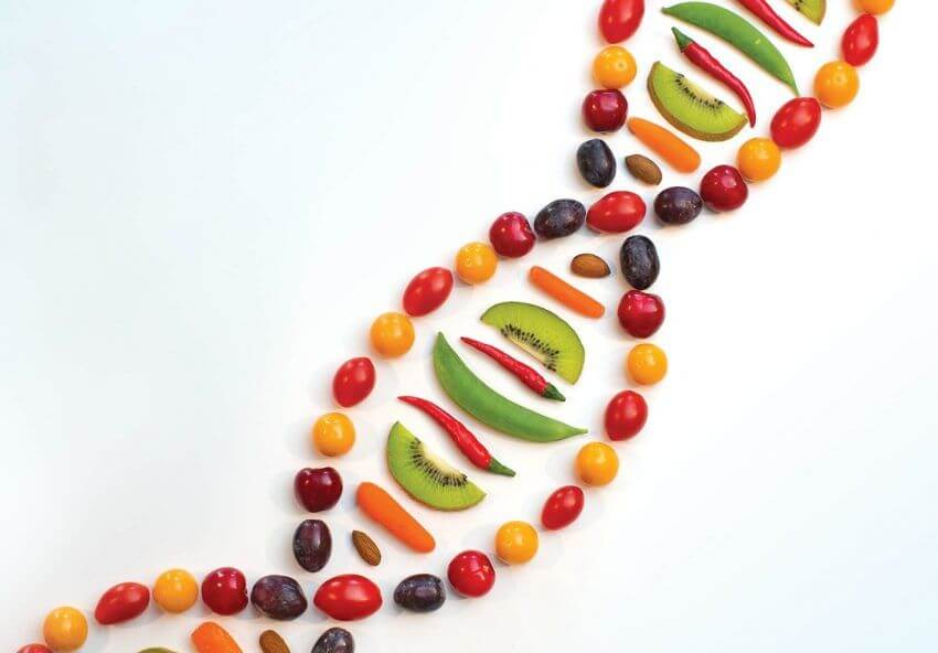 nutrigenetica alimentarsi in base al dna e ai geni