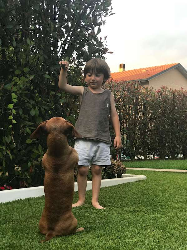 bambini prendersi cura animali montessori