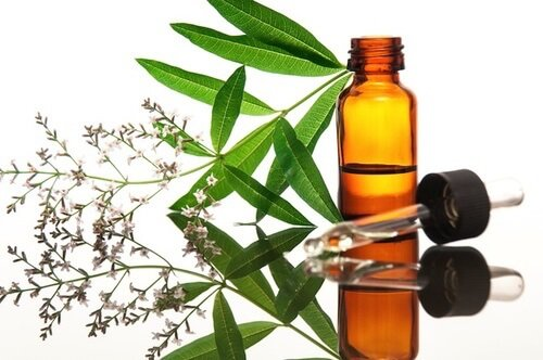 tea tree oil_1
