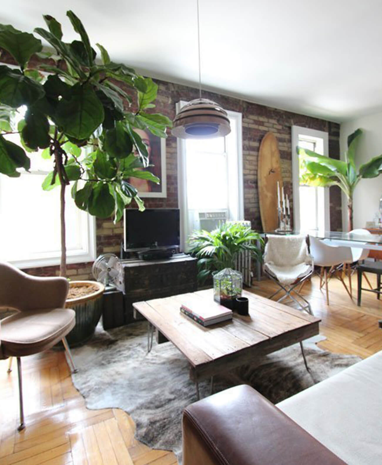 greenery-in-home-decor_ideas-for-decroating-your-apartment