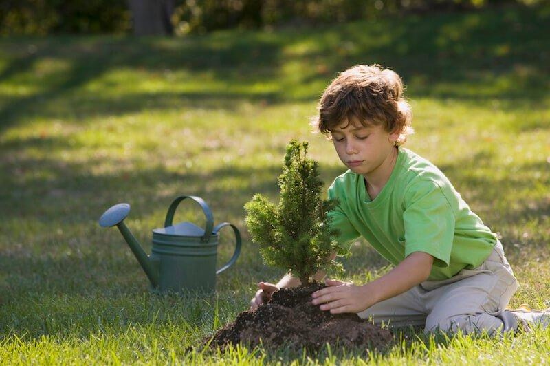 Avvicinare i bambini alla educazione ambientale