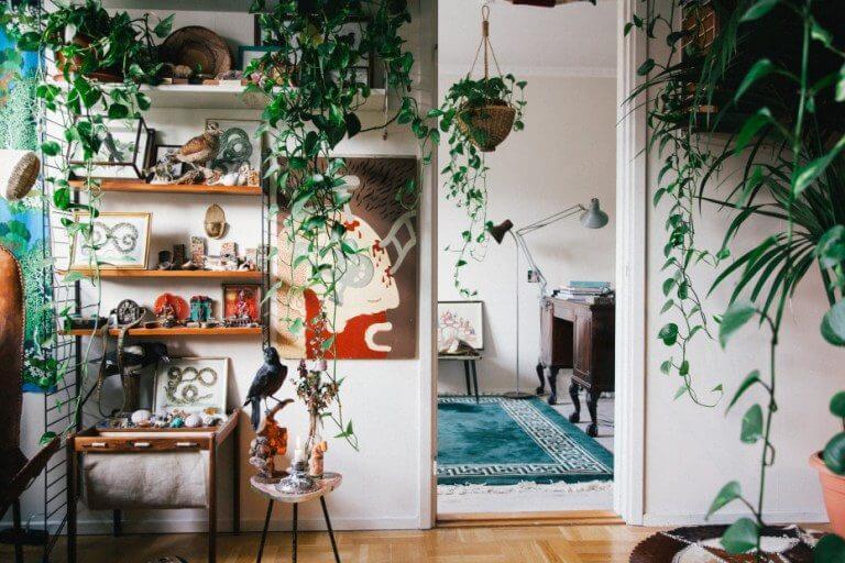 Urban jungle home come arredare la casa con le piante for Arredare casa con le piante