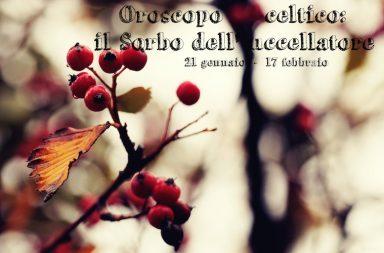 Oroscopo Celtico_Sorbo Selvatico