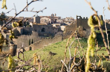 Tuscia Viterbese Tuscania