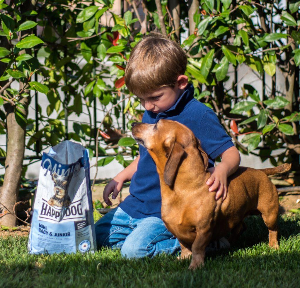 Mangimi online bio cani