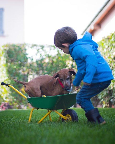 Bambini felici liberi di giocare