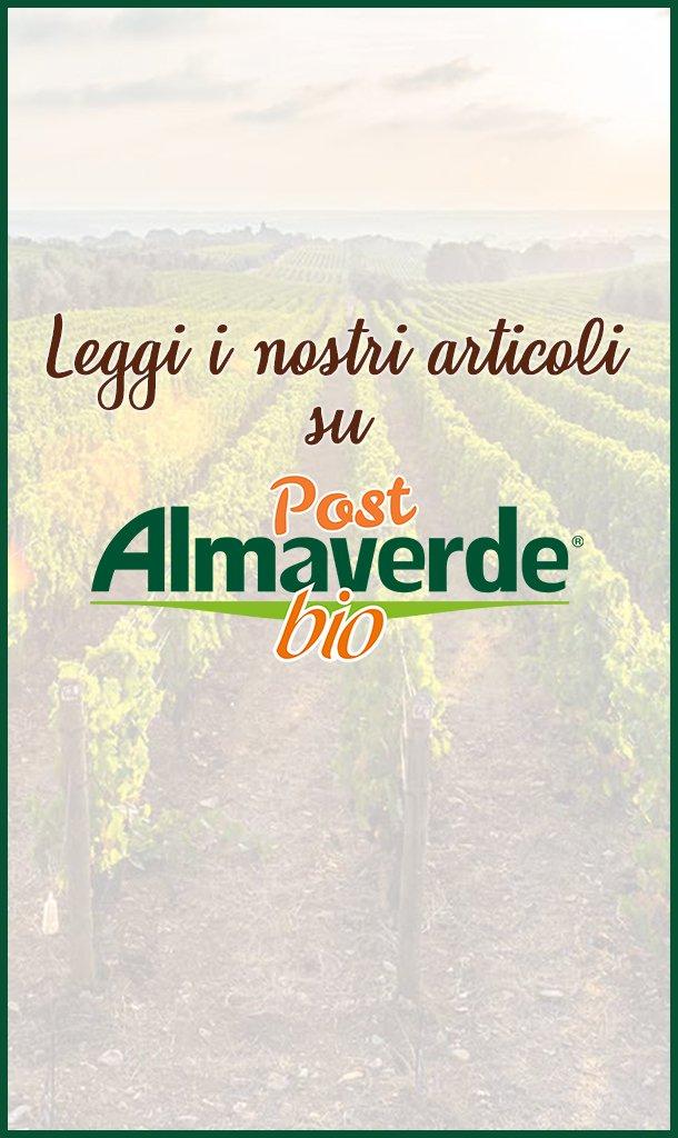 AlmaverdeBio_BANNER_Chizzocute